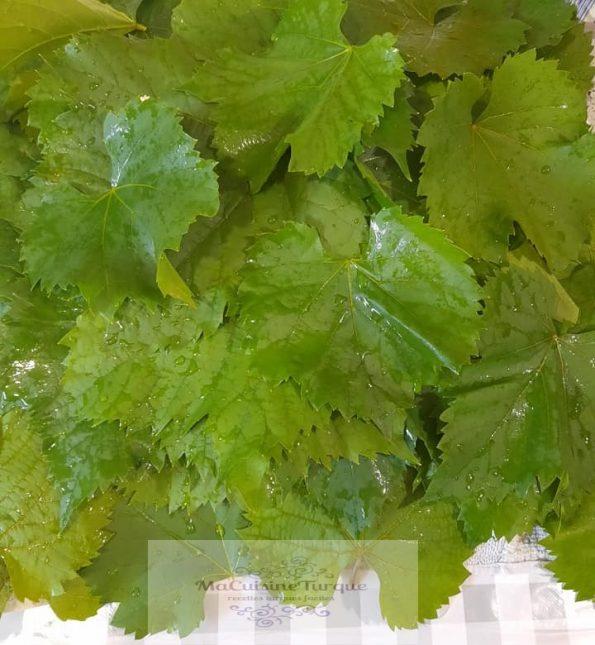 feuilles de vignes fraîches